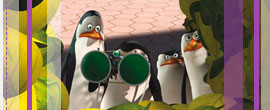 Pinguine Skipper, Kowalski, Private und Rico